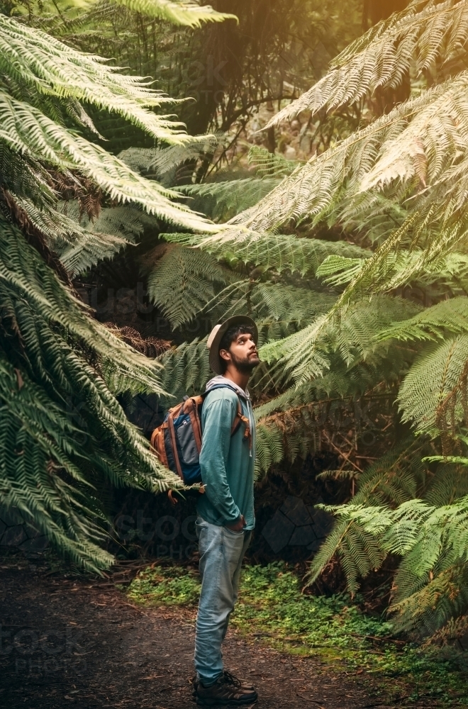 A young male adventurer goes into the woods - Australian Stock Image