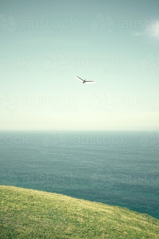 Abstract shapes of a single hang glider - Australian Stock Image