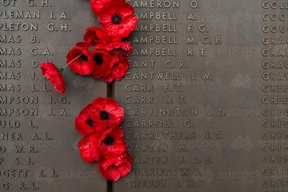 Image of anzac day at the australian war memorial close up of anzac day at the australian war memorial close up of poppies australian stock image mightylinksfo