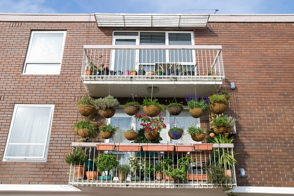 Apartment balcony covered with hanging baskets and plants - Australian Stock Image