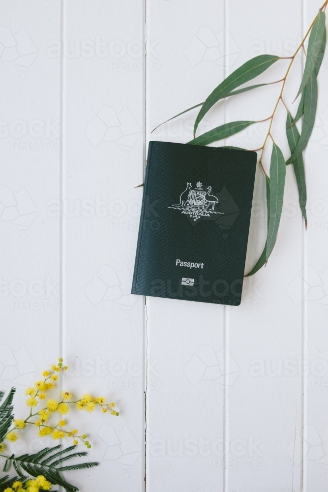 Australian  passport with wattle and gum leaf and copyspace - Australian Stock Image