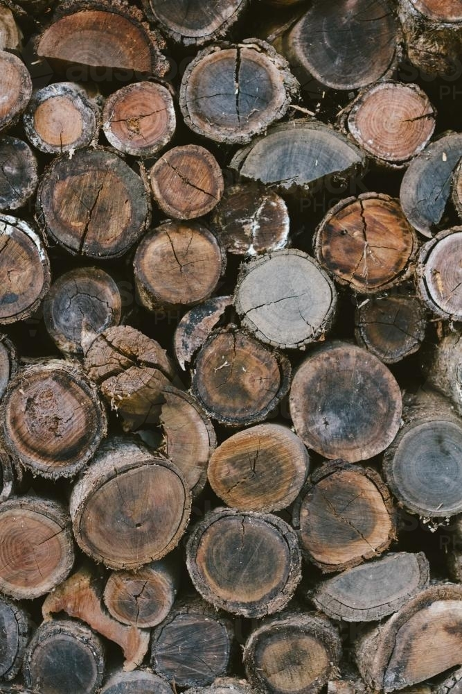 Background of stacked round logs of firewood - Australian Stock Image