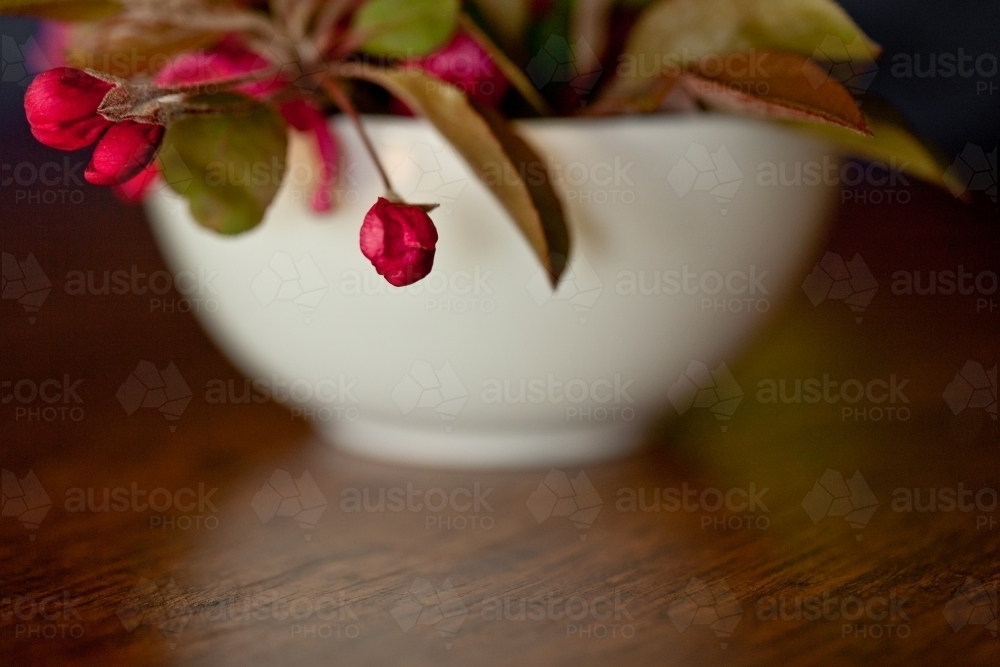 bowl of red crab apple flowers and leaves on a timber table - Australian Stock Image