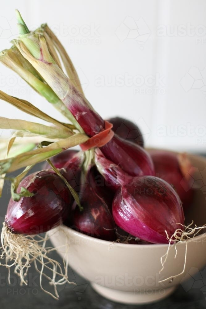 Bowl of red onions - Australian Stock Image