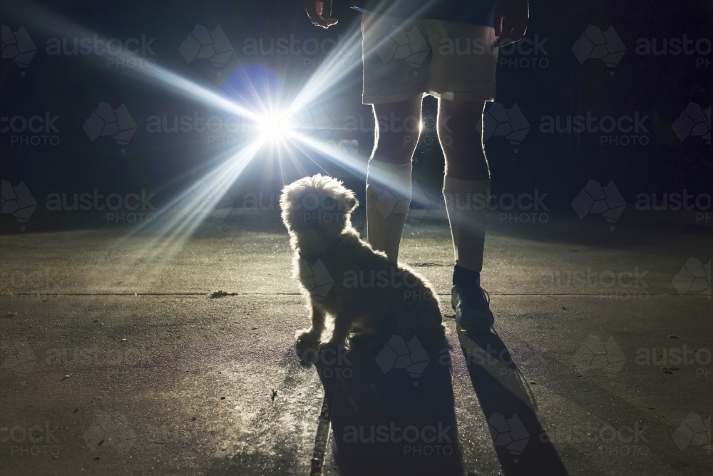 Boy and his dog standing in front of headlights at night - Australian Stock Image