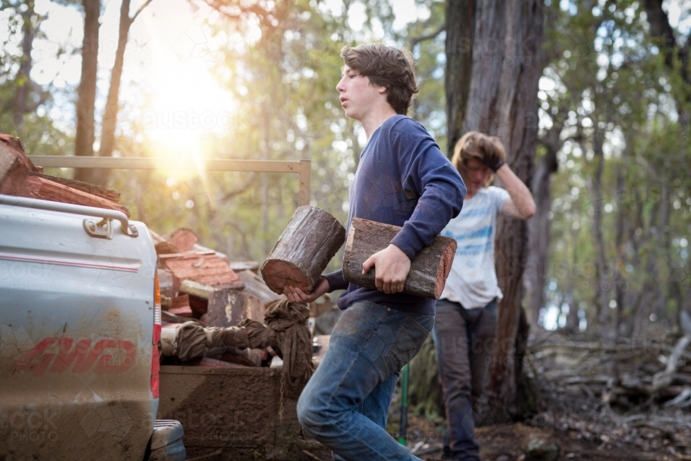 Brothers loading firweood onto trailer - Australian Stock Image