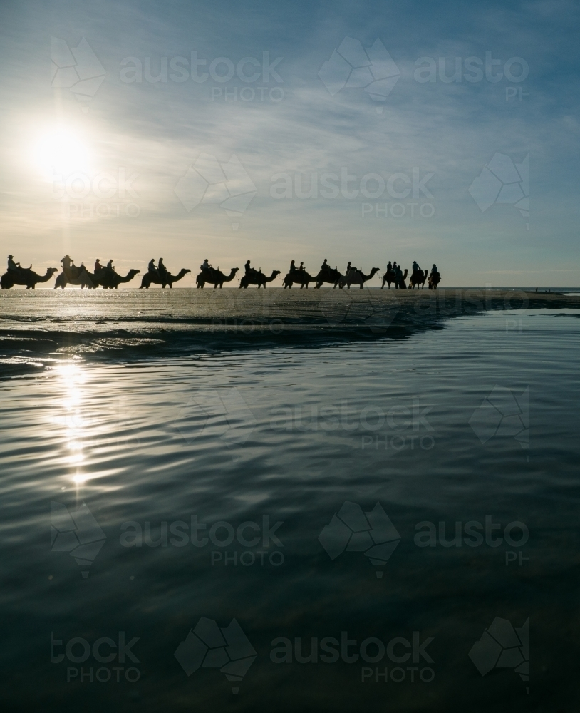 Camel Train on Cable Beach - Australian Stock Image