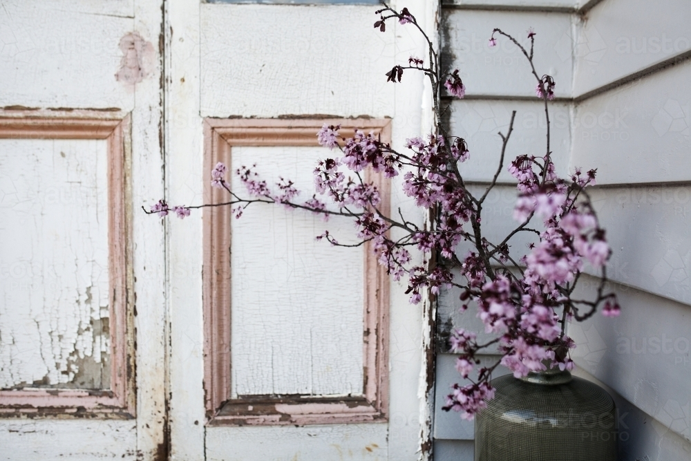 Image Of Cherry Blossom In Vase Next To Old Door Frame Austockphoto