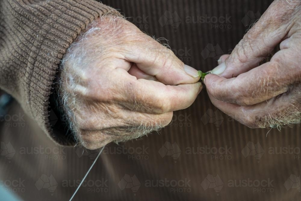 Close up of an old man's hands baiting a fishing hook - Australian Stock Image