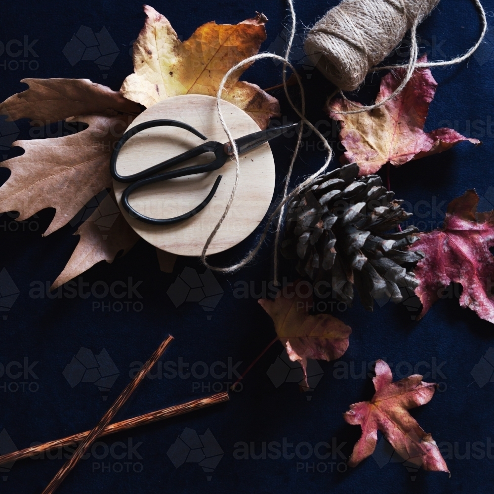 Collection of autumn inspirational objects on dark navy background - Australian Stock Image