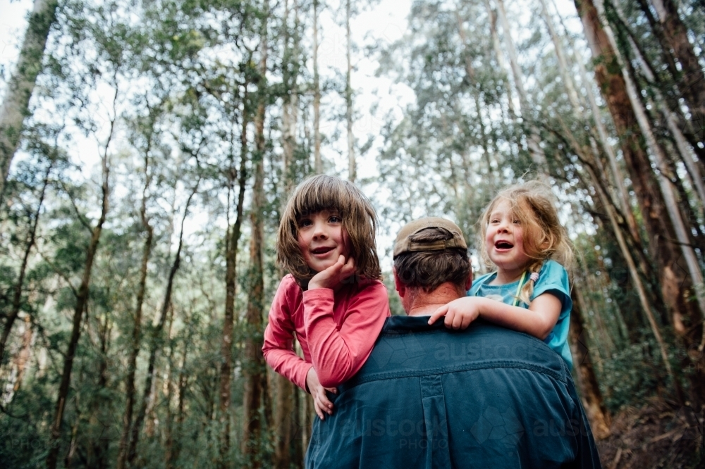 Dad carrying two daughters in the forest - Australian Stock Image