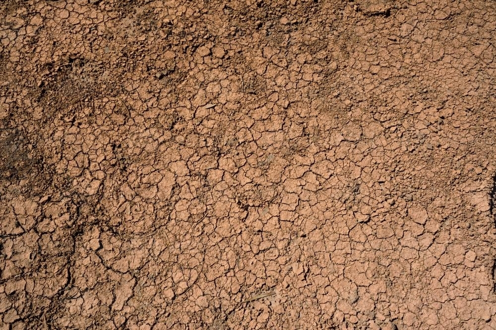 Detail shot of cracked dried mud - Australian Stock Image