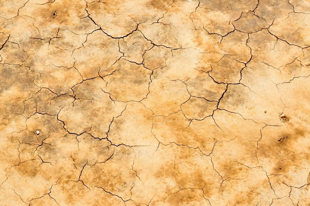 Detail shot of mottled orange and yellow mud and clay that is cracked and peeling - Australian Stock Image