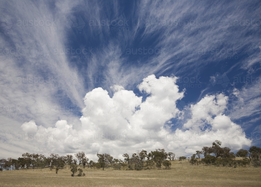 Dramatic white clouds against blue sky above dry paddock with trees - Australian Stock Image