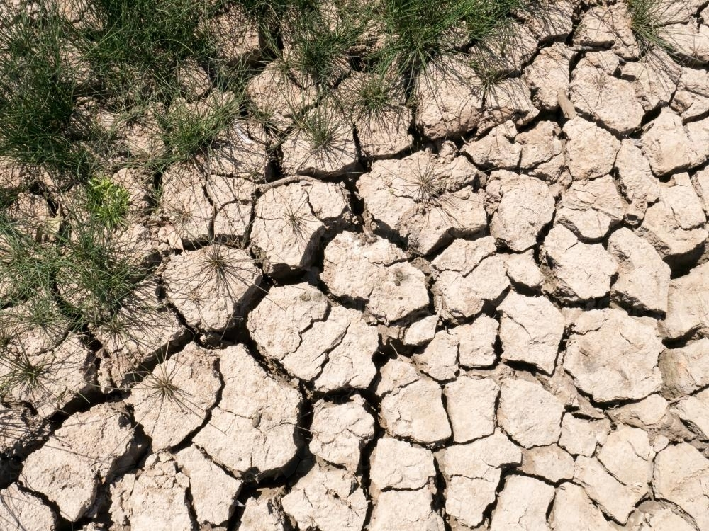 Dry mud showing cracks from lack of rain - Australian Stock Image