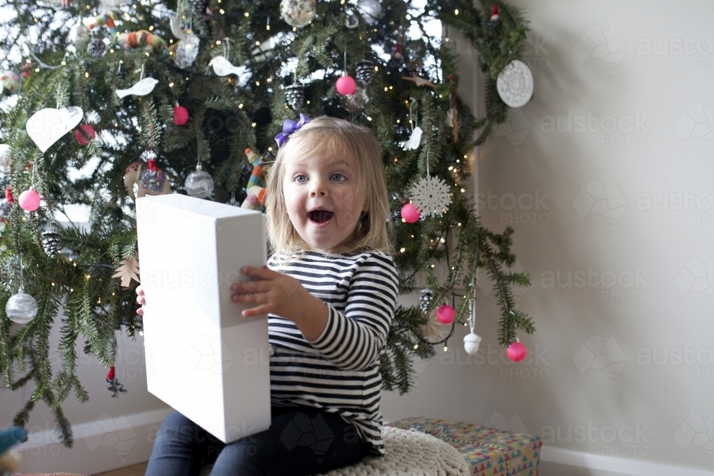 Excited young girl with present in front of Christmas tree - Australian Stock Image