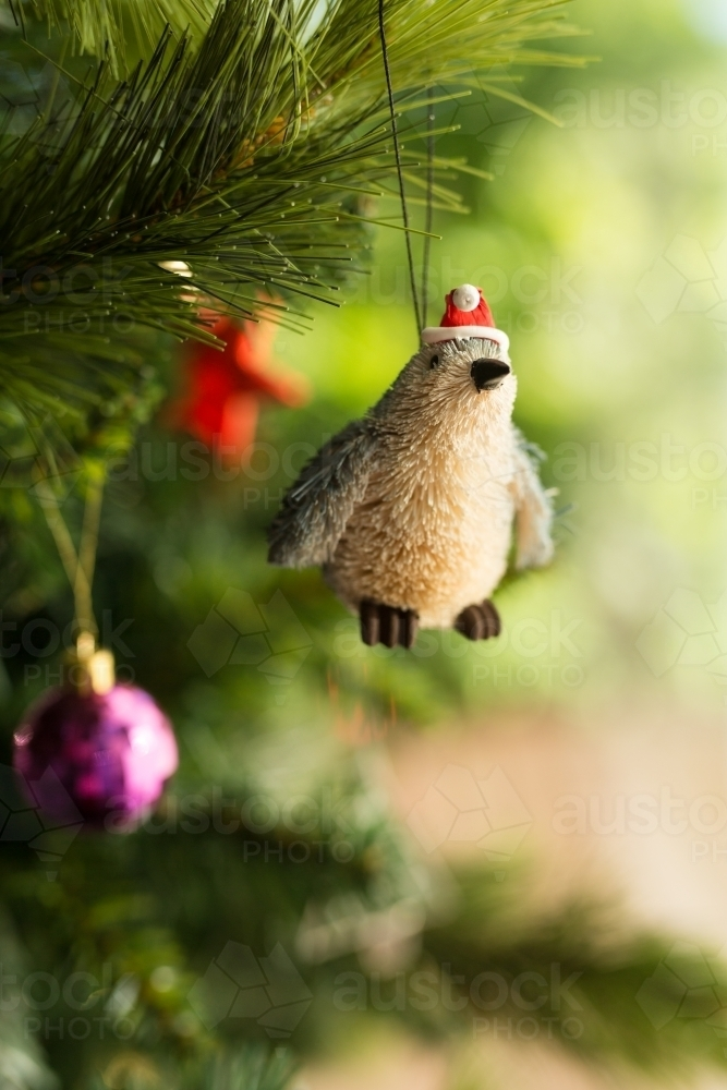 fairy penguin christmas decoration hanging on a christmas tree australian stock image