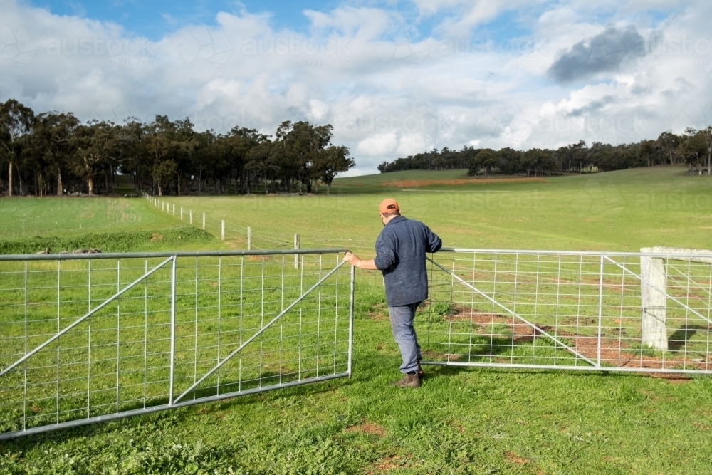 Farmer opening gate into paddock with green grass - Australian Stock Image