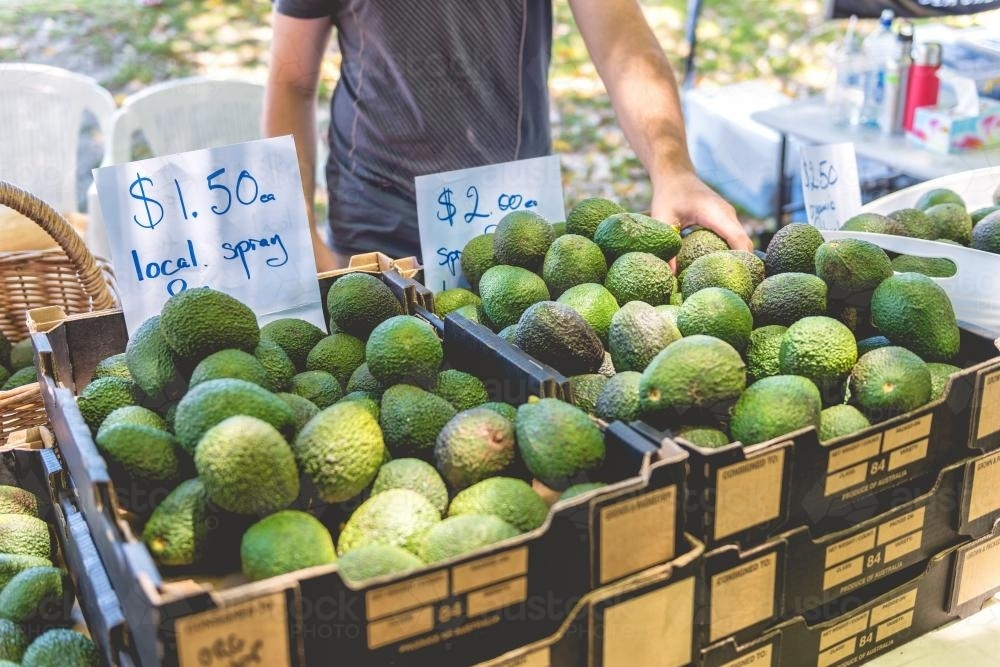 Farmers market with avocados on display - Australian Stock Image