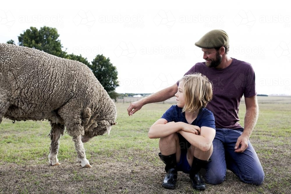 Father and daughter in paddock looking at sheep - Australian Stock Image