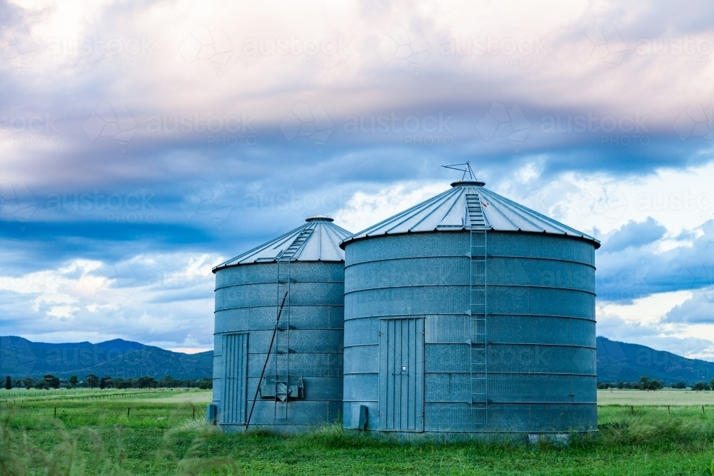 Good times on a farm with green grass and grain silos - Australian Stock Image