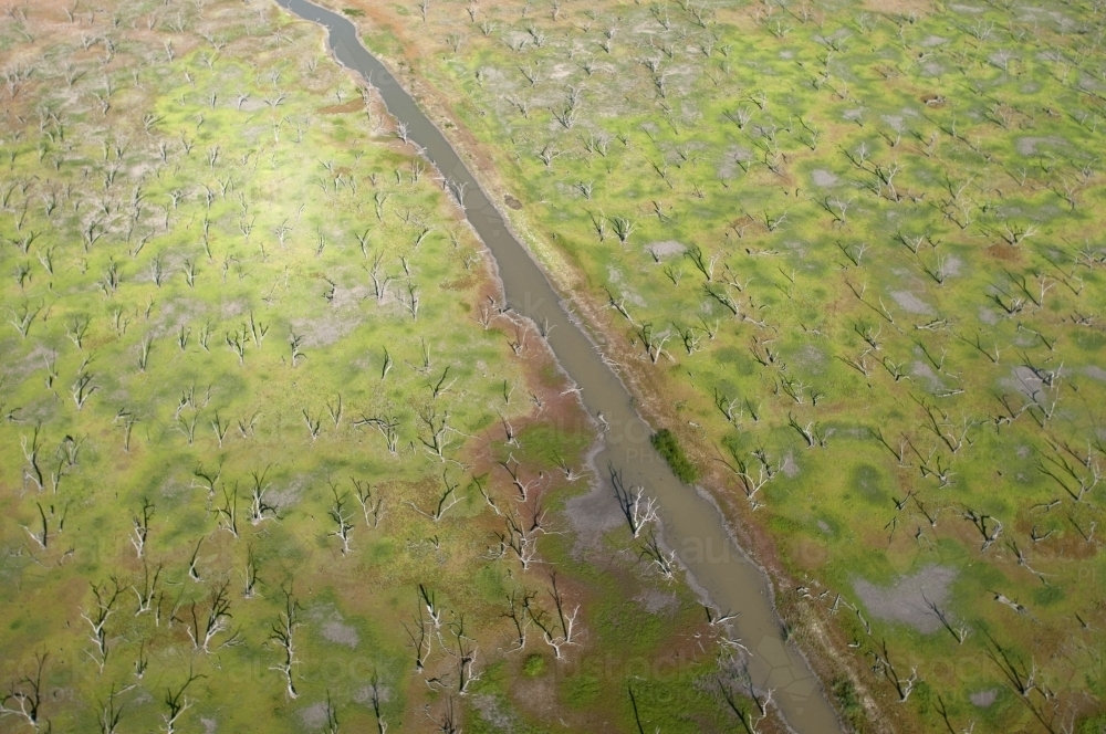 Green Rural Outback Aerial Landscape with River and Dead Trees - Australian Stock Image