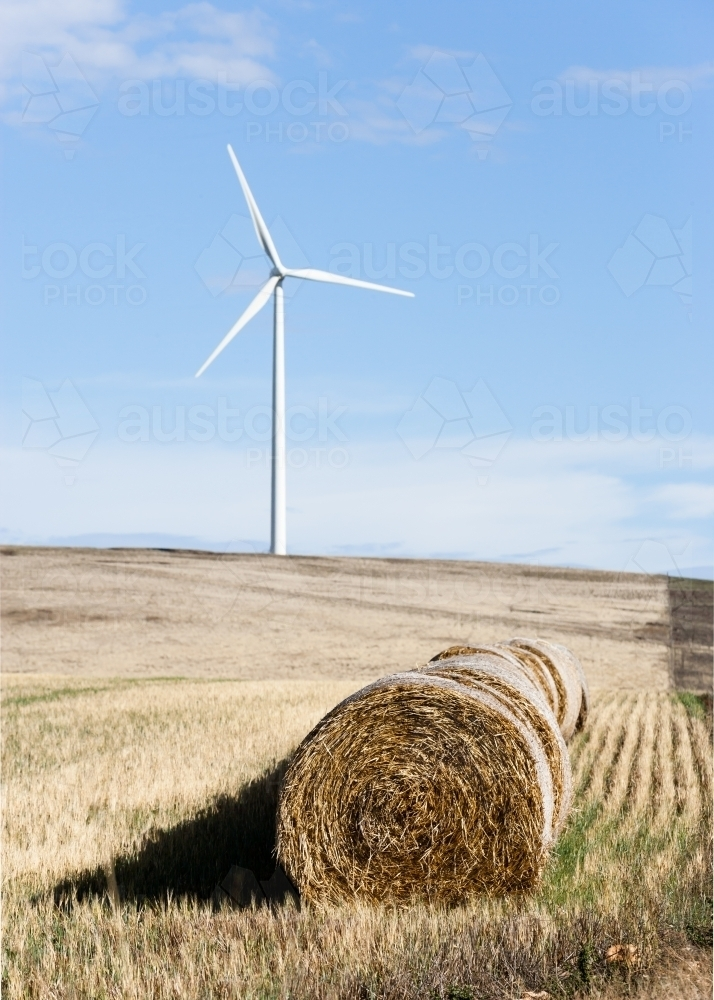 Hay bales with wind turbine in background - Australian Stock Image