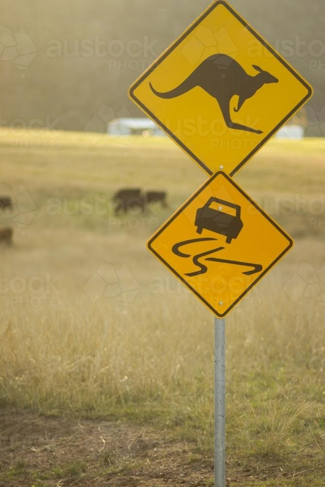 Kangaroo and Slippery Road Sign in Paddock - Australian Stock Image