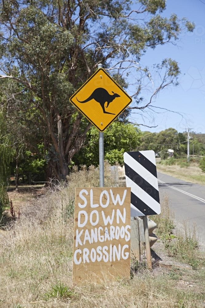 Kangaroo crossing sign in country Victoria - Australian Stock Image