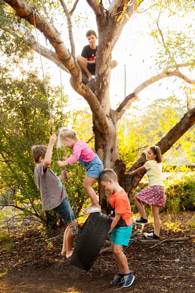 Kids playing with friends in tree and tyre swing - Australian Stock Image