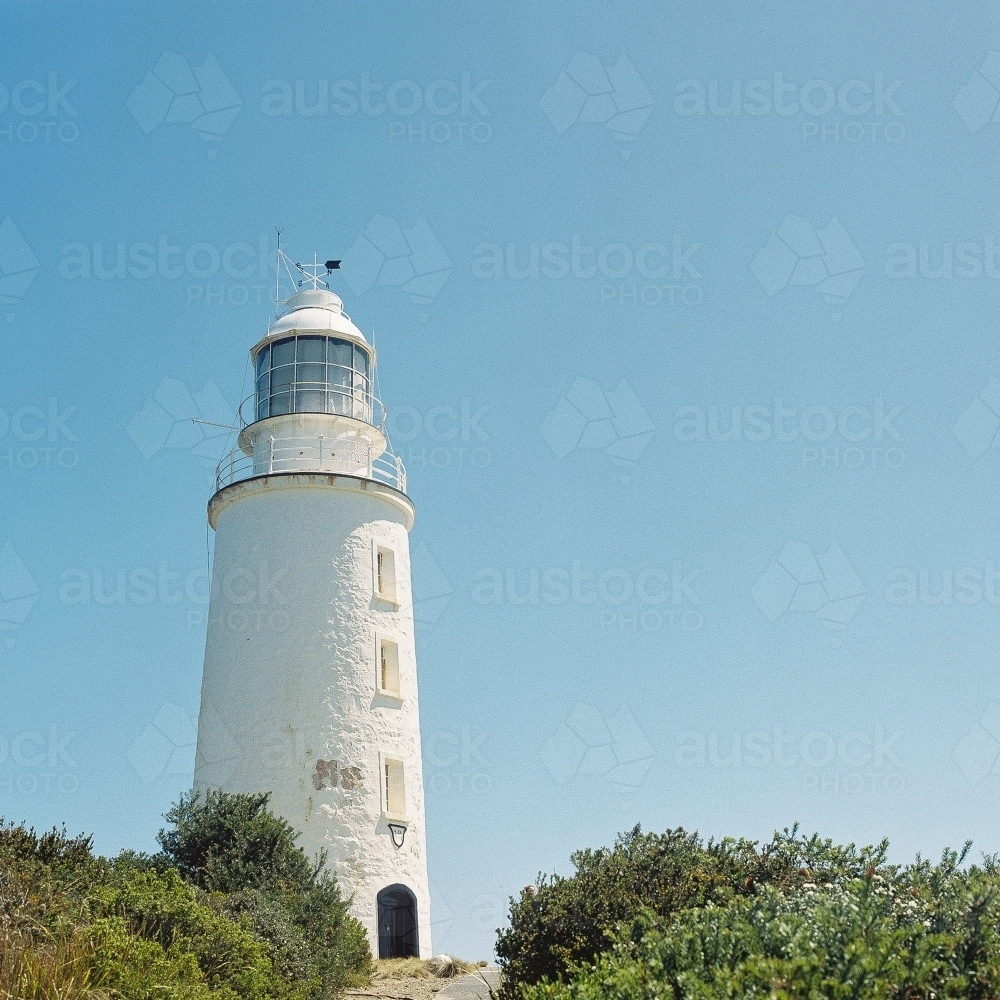 Lighthouse amongst the bushes - Australian Stock Image