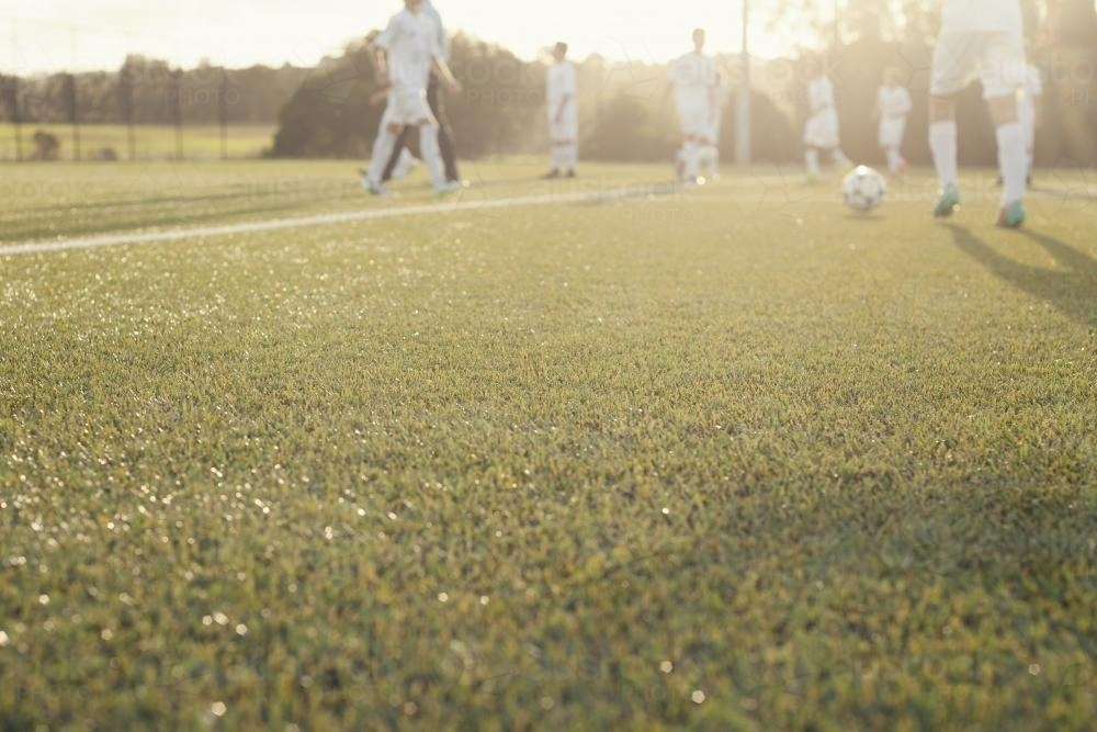 Low view of afternoon soccer training - Australian Stock Image