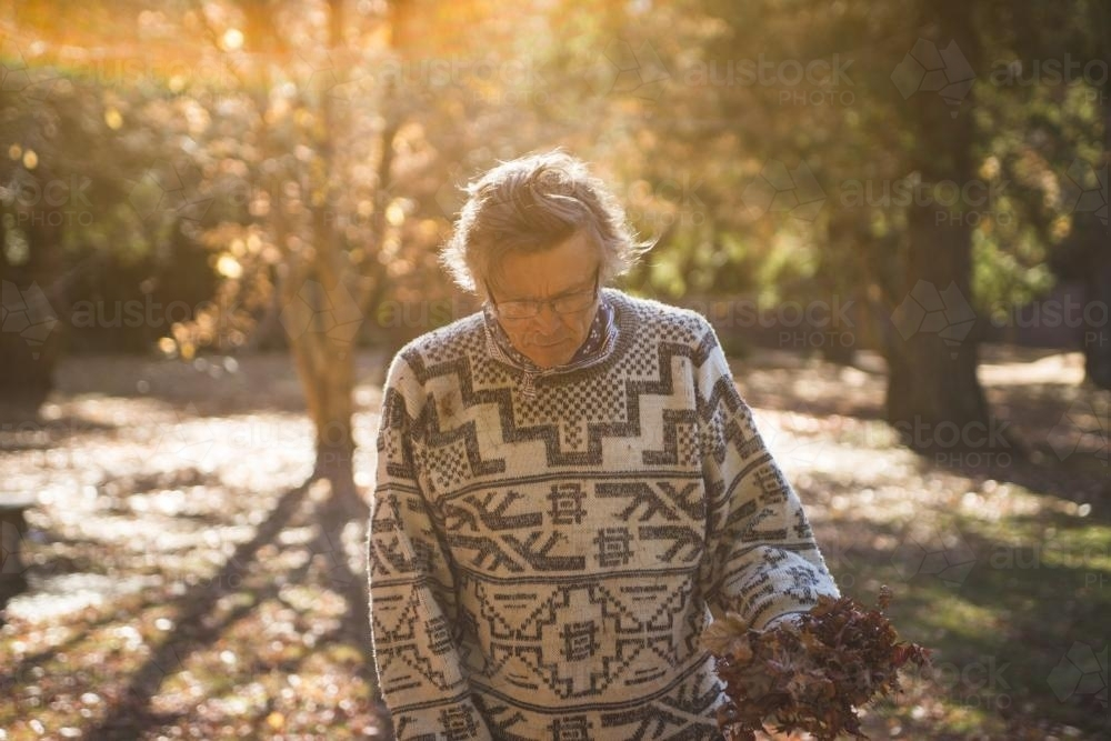 Man looking down and holding autumn leaves in the park - Australian Stock Image