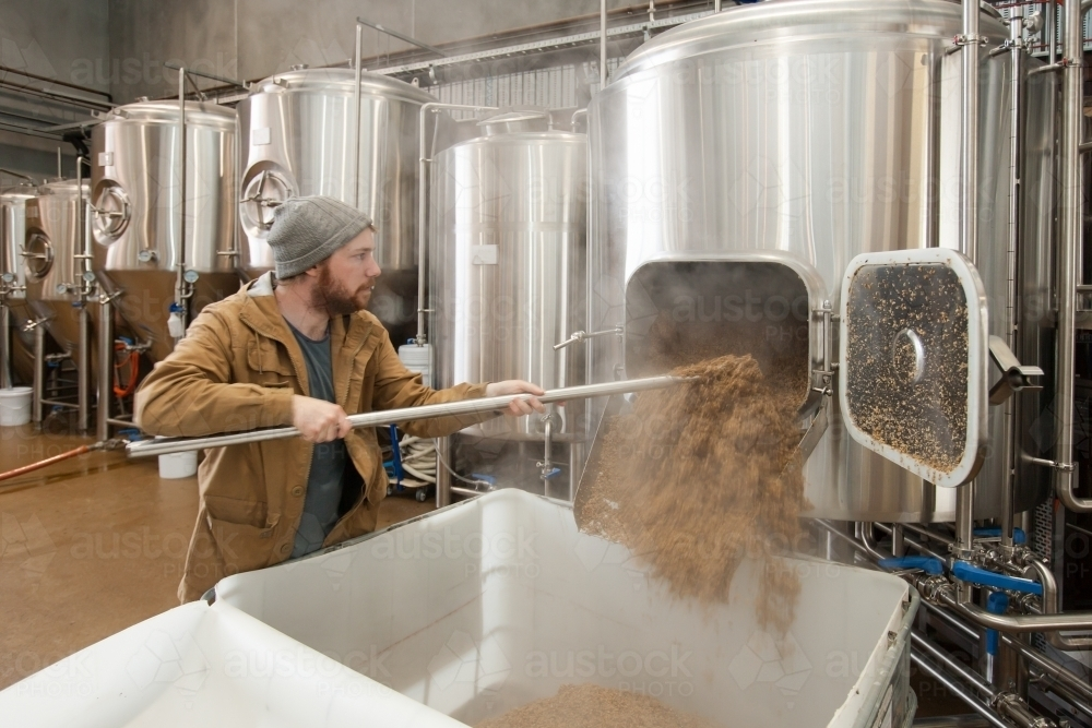 Man removing waste mash from stainless steel tank at a microbrewery - Australian Stock Image