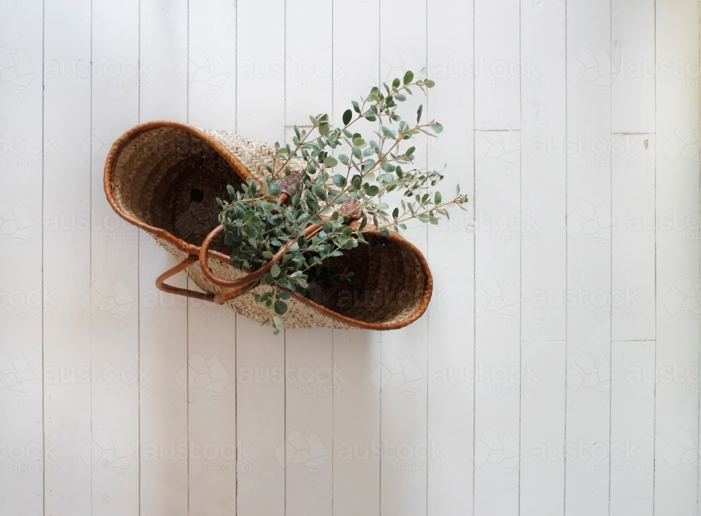 Market basket with eucalyptus branches on white floorboards - Australian Stock Image