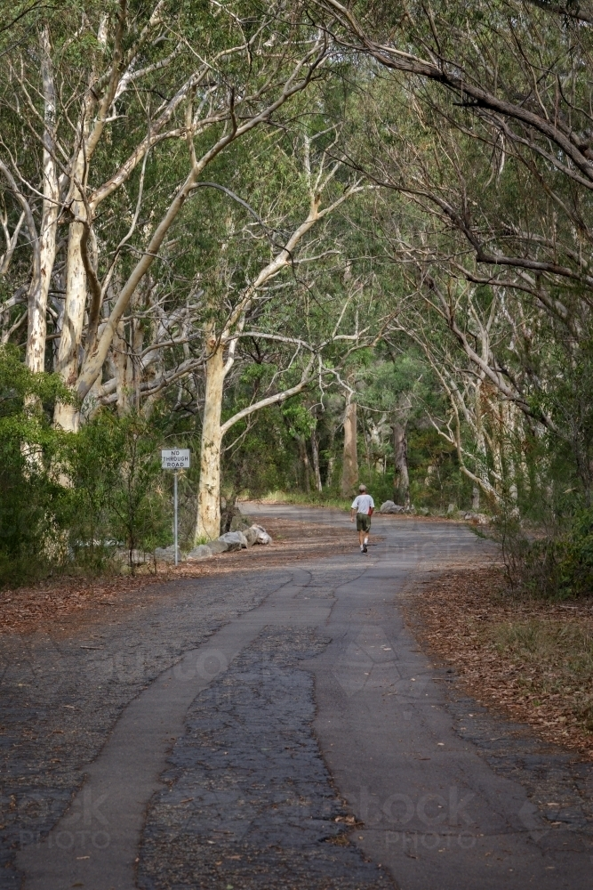 Mature aged man keeping fit by walking on a bush road - Australian Stock Image