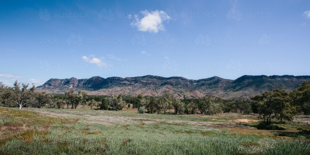 Mountain landscape view of the Flinders Ranges - Australian Stock Image