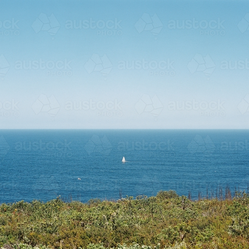 Ocean Landscape with Green Scrub Headland in Foreground - Australian Stock Image