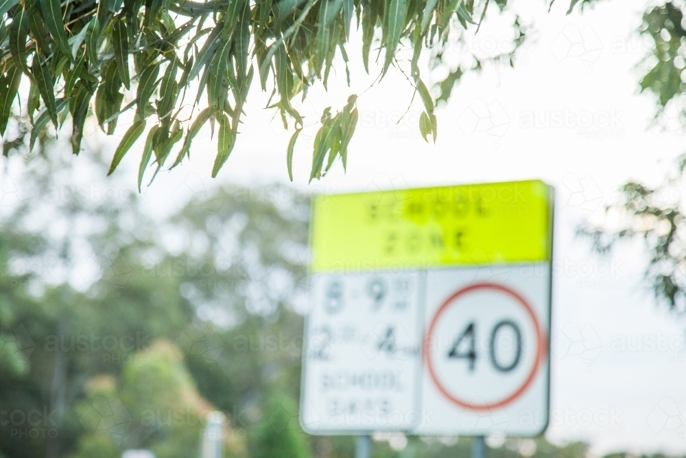 Out of focus school zone sign with gum leaves - Australian Stock Image