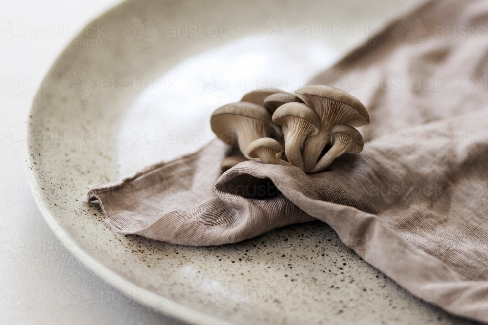Oyster mushrooms on a ceramic plate - Australian Stock Image