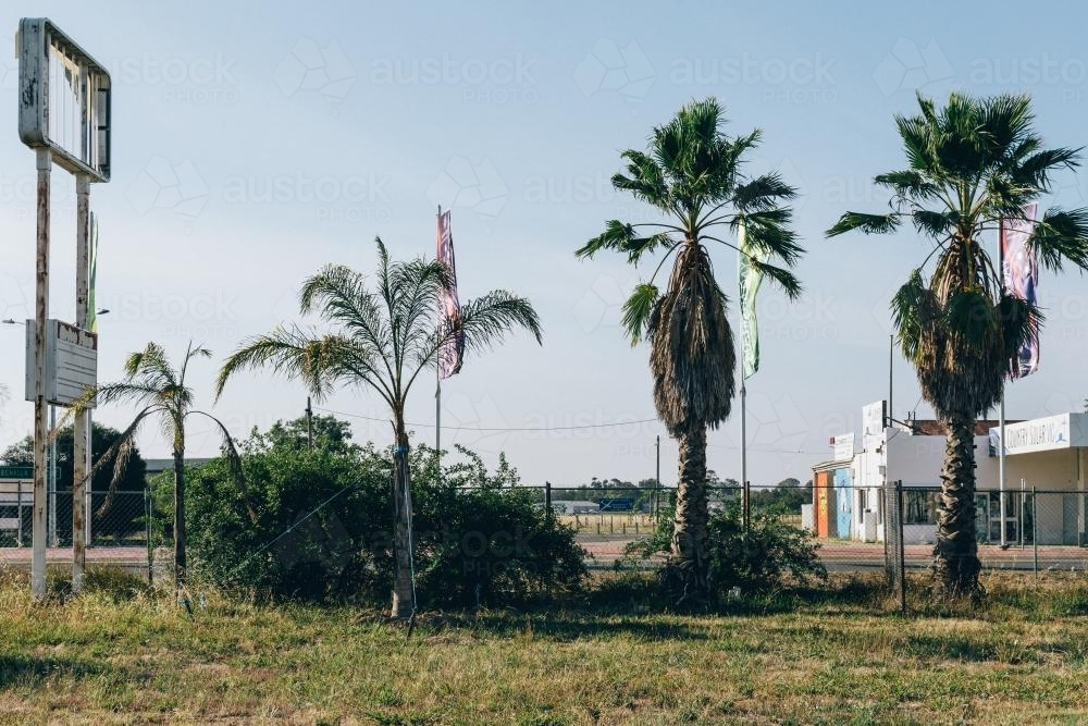 Palm trees growing beside abandoned petrol station - Australian Stock Image