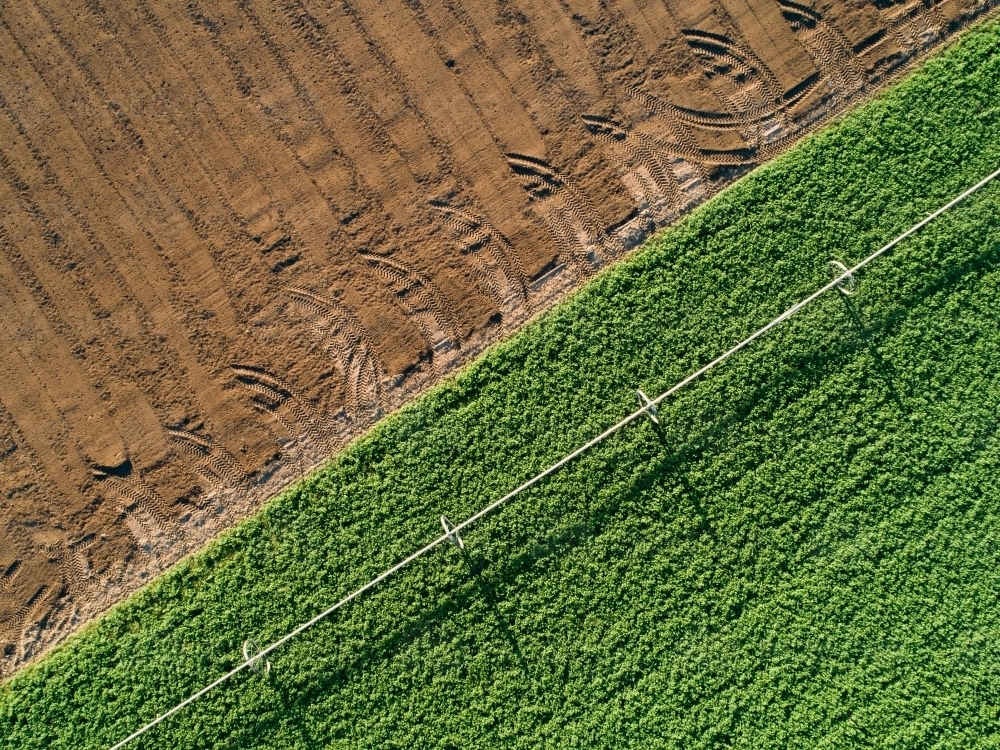 Patterns of green and brown in farm paddock - Australian Stock Image