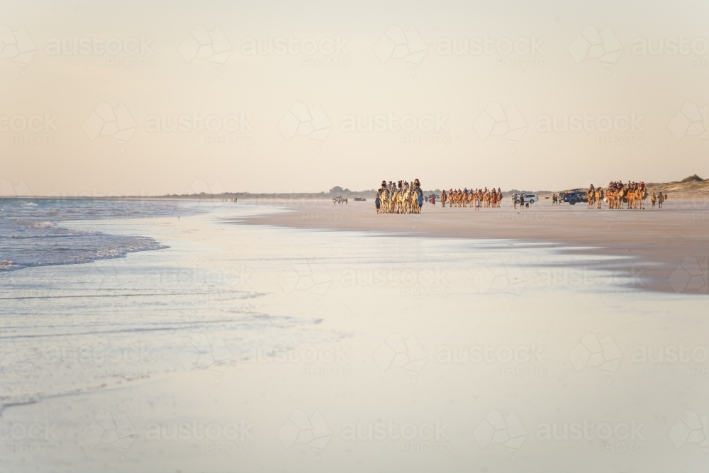 People riding camels in distance on remote beach - Australian Stock Image