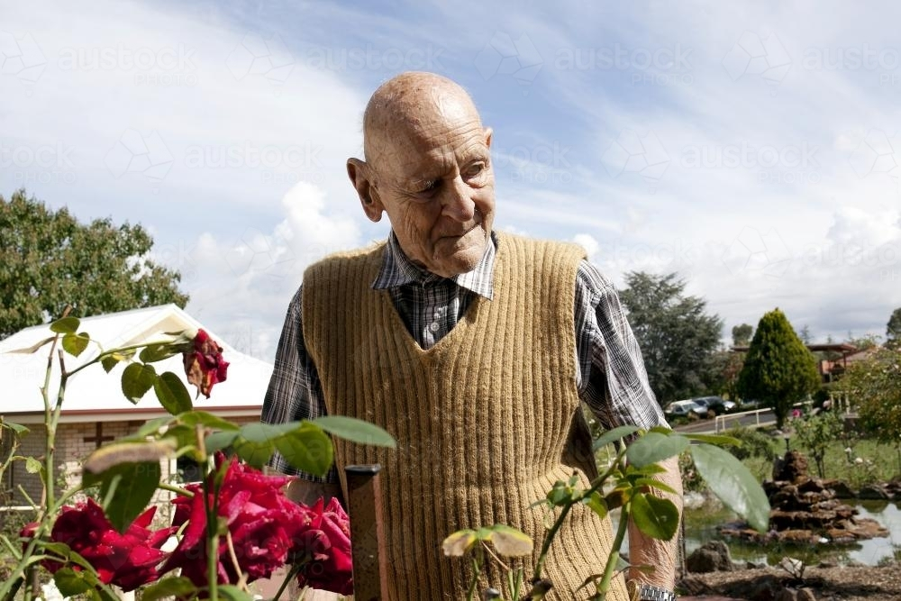 Portrait of elderly man standing in a rose garden at an aged care facility - Australian Stock Image