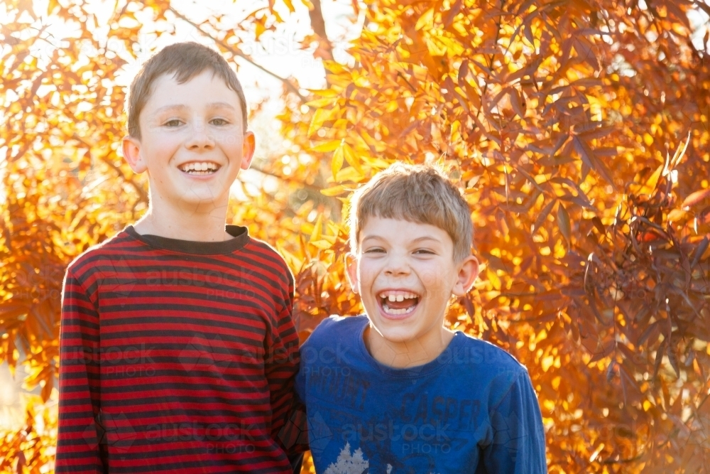 Portrait of young brothers laughing together in autumn - Australian Stock Image