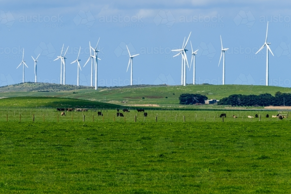 Row of wind turbines on private farmland - Australian Stock Image