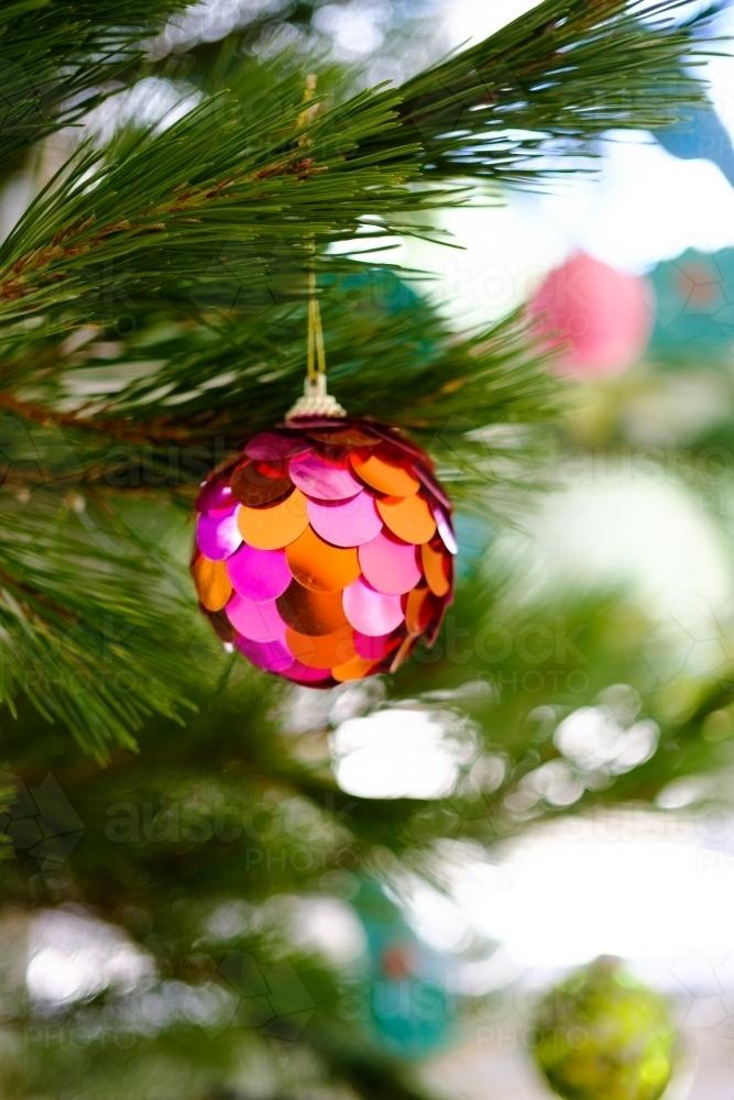 Australian Christmas Tree Pine.Image Of Sparkly Christmas Bauble Hanging On Real Christmas