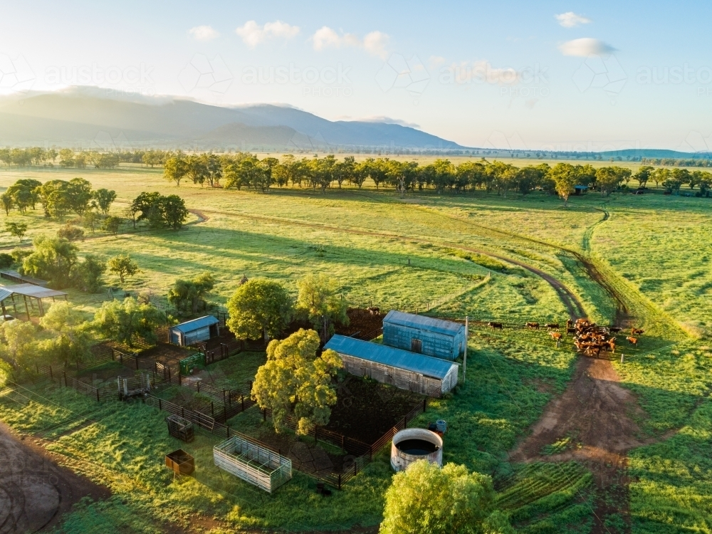 Stockyard on green farm as seen from drone - Australian Stock Image