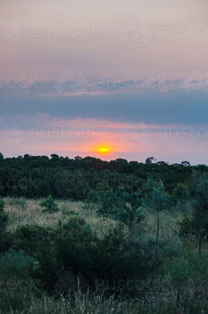 Sun setting over bushland - Australian Stock Image