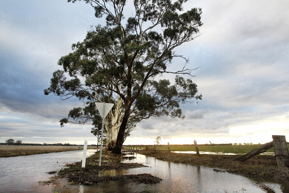 Sunlight on flooded paddocks and road - Australian Stock Image